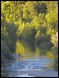 WM-2005-0821- 1510 - LANG - Languedoc et Camargue copie.jpg