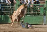 Kernville Rodeo