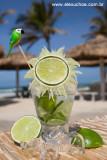 drinks praia 8818.jpg