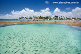 Piscinas naturais salpicada de peixinhos coloridos, Porto de Galinhas, Pernambuco 9334