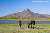 Pico do Cabugi, Lages, Rio Grande do Norte 0341.jpg