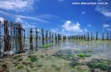 Currais de Peixe na praia das fleixeiras Trairi Ceara -090402-0033.jpg
