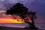 A_1 Praia de Aranau, Acarau, Ceara, 5855.jpg