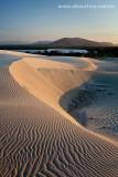 Dunes at Banana Lagoon, Cumbuco, Caucaia, Ceara, 2385