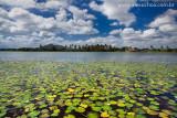 Lagoa do Banana, Cumbuco, Caucaia, Ceara, 2563, dez09.jpg