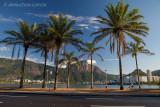 Lagoa-Rodrigo-de-Freitas-Rio-de-Janeiro-120310-9361.jpg