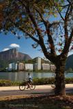 Lagoa-Rodrigo-de-Freitas-Rio-de-Janeiro-120310-9477.jpg