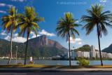 Lagoa-Rodrigo-de-Freitas-Rio-de-Janeiro-9513