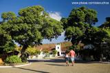 Museu da Cachaça - Maranguape- CE 6409