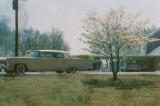 1962graceland2.jpg