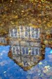 Spiegelung im Wasser der Gose