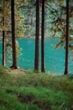 Auerhahner Seen