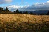 Schalker Bergplateau   Im Hintergrund ist der Brocken zu sehen