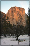 Sunset warms up the cliff of the El Capitan