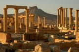 Palmyra - S. II A.C.