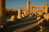 Temple of Nabá - Palmyra