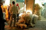 Selling Wool - Aleppo