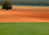 Soria Land