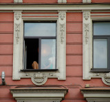 In the Window - St. Petersburg