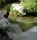 Refreshing in the Borosa River