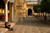 Oranges Patio - Mezquita