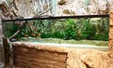 7.000 Liter Discus Aquarium - Set up by Oliver Knott