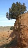 Perched on a Precipice