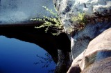 Yosemite pool