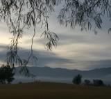 Cool, Damp Dawn