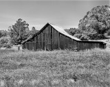 Old Barn Near Pismo.jpg