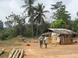 Village near the Picathartes site, Ghana