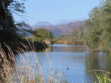 Ben Lomond and the Endrick Water, Low Mains-Loch Lomond NNR