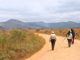 Birding the grasslands, Lope NP, Gabon