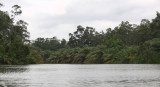 Rivers and creeks link Port Gentil to Omboué, Gabon