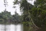 Akaka, Loango NP, Gabon