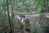 Korup river crossing
