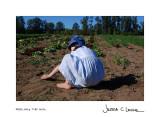 feel the soil