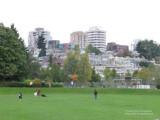 Charleson Park by False Creek