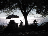 English Bay silhouettes