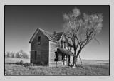 Hoar frost  Marquette, KS.