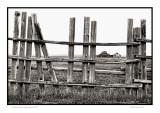 Mormon Row fence, Yellowstone N.P.