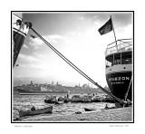 Istanbul harbor, 1955