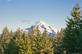 Oct 22 07 Larch Mountain  Hood-28.jpg