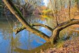 Nov 20 07 Hillsboro river park-38.jpg