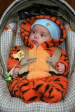 But the most wonderful thing about Tiggers is, I'm the only one!