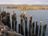 Old Port #5948_2