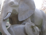 Philadelphia Zoo #6172