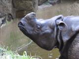 Philadelphia Zoo #6219