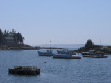 Cosy Harbor