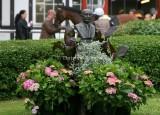 Horse Racing 2008